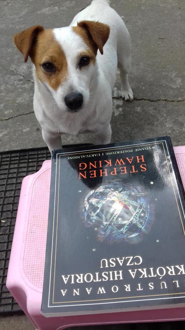 Suita przy książce Hawkinga