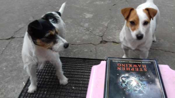 Aria i SUita przy książce Hawkinga