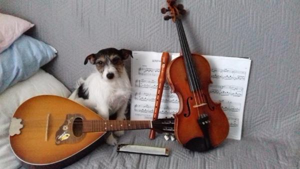 Nasze instrumenty