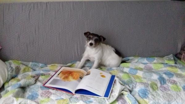 Czytamy!