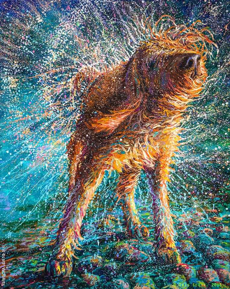 Otrząsający się pies