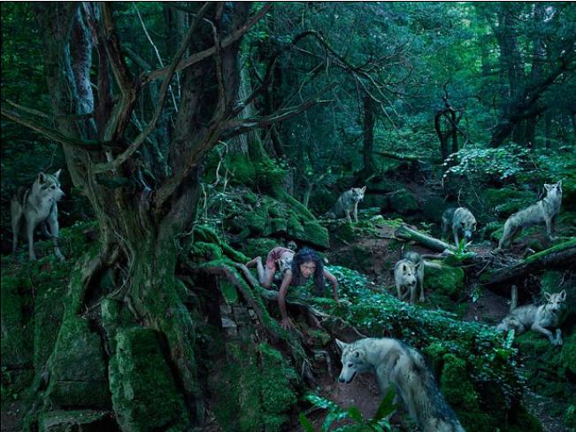 Dzieci wychowywane przez psy i wilki